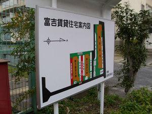 tomiyoshi3_1.jpg